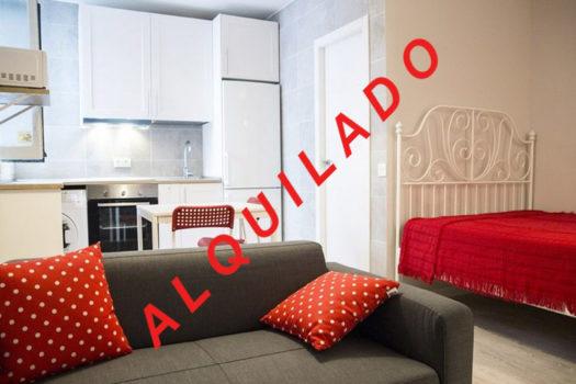 Piso en alquiler | Calle Salitre | Salón (Sofá) | Alquilado